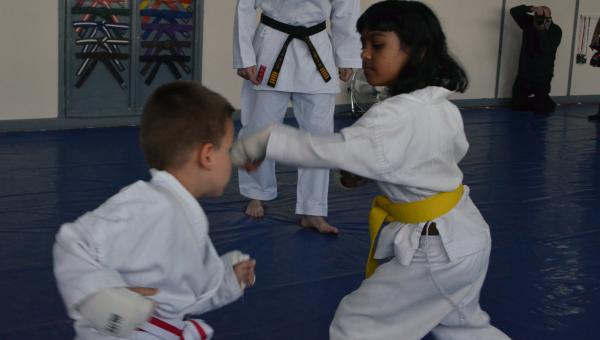 Junior Karate Beginners class (4-11)